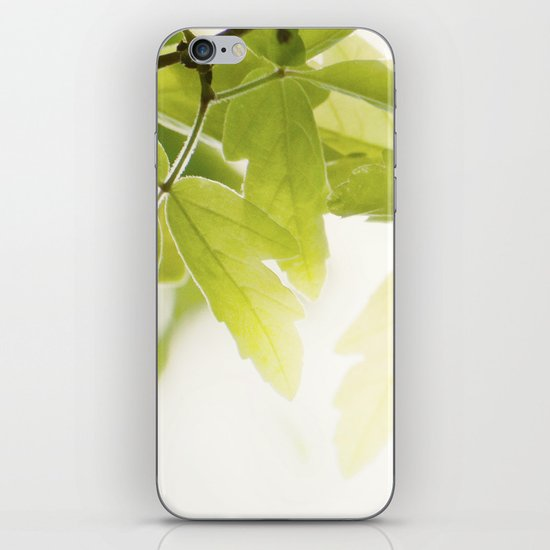 the Daily Sun iPhone Skin