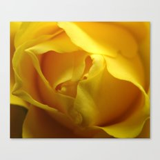 Yellow Roses #4 Canvas Print