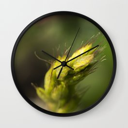 Rye on pink Wall Clock