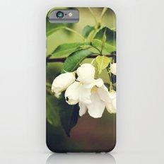 spring blossom. iPhone 6s Slim Case