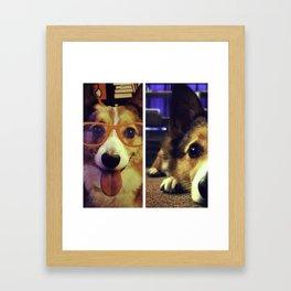 corgi faces Framed Art Print