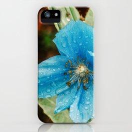 Himalayan Blue Poppy, fairbanks alaska iPhone Case