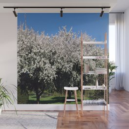 Crab Apple Trees in the Spring Wall Mural