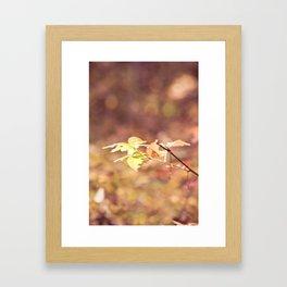 Autumn Child Framed Art Print