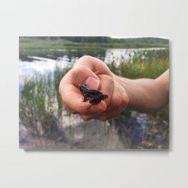 Spring Peeper Metal Print