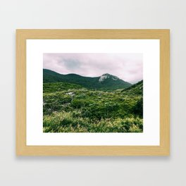 Wilsons Promontory National Park, Victoria, Australia Framed Art Print