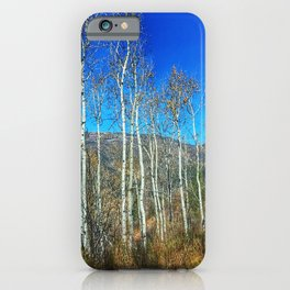 Aspens on Red Mountain - Glenwood Springs, CO iPhone Case