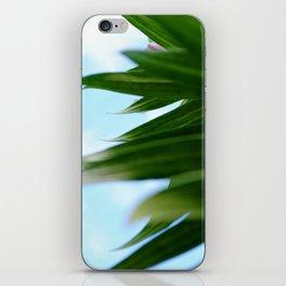 Hidden iPhone Skin