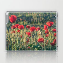 Field covered with red flowers illuminated by the sunrise sun. Flowers of delicate petals in the mea Laptop & iPad Skin