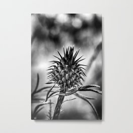 Thorn II Metal Print