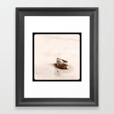 Teabag'd. Framed Art Print