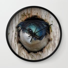 Meeting the New Nestbox Homeowner Wall Clock