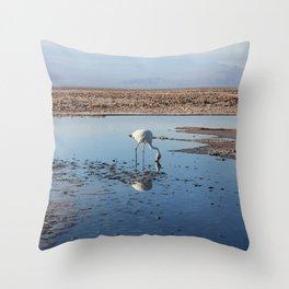 Salar de Atacama Throw Pillow