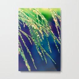 grass flower shower Metal Print