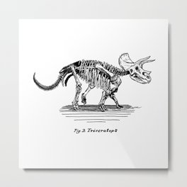 Figure Two: Triceratops Metal Print