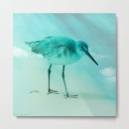 beach sandpiper turquoise aesthetic wildlife art altered photography Metal Print