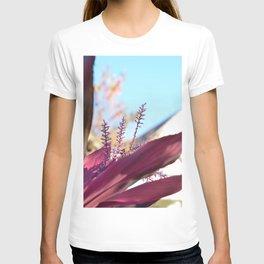 Santa Barbara Plant T-shirt
