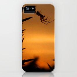 Sunset Spider iPhone Case