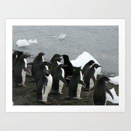 Adelie Penguins 3, Antarctica 2006 Art Print