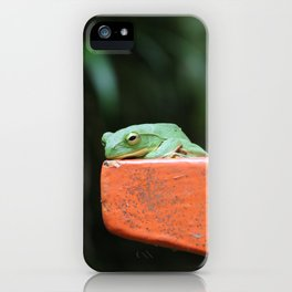 Green Frog on Lamp Post iPhone Case