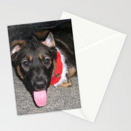 Koda floppy ears Stationery Cards