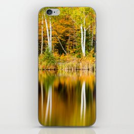 Autumn Reflections - Birch trees on Lake Plumbago iPhone Skin