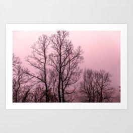 Naked trees silhouette Art Print