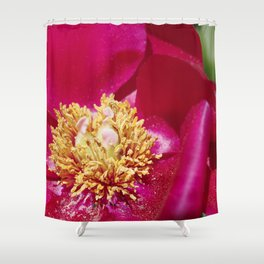 Peony Scarlet O'Hara - Red Satin with Gold Dust Shower Curtain