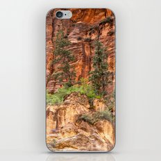 The Narrows, Zion iPhone & iPod Skin