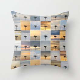 A Year in the Amazon Throw Pillow