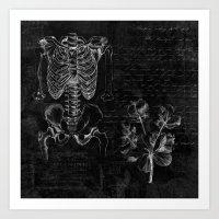 Anatomy Collage  Art Print