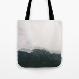 Seeing double. Tote Bag