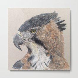 Crested Eagle Metal Print