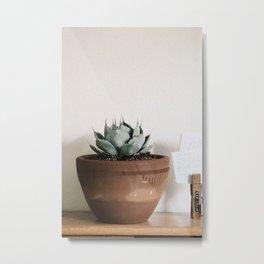 indoor agave Metal Print