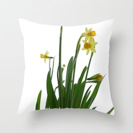 Narcissus flower Throw Pillow