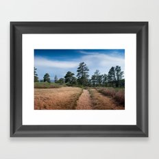 Zimmerman Park Framed Art Print