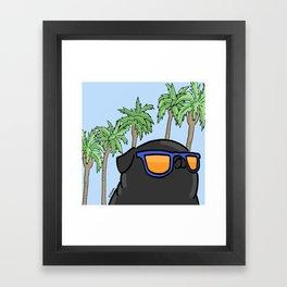 Black pug in California Framed Art Print