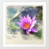Zimbabwe Water lily Art Print
