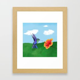 The very hungry hummingbird Framed Art Print