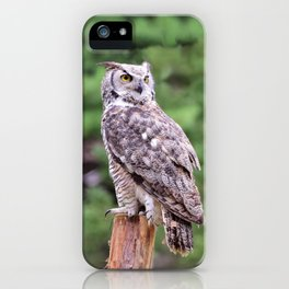 Great Horned Owl on a Post iPhone Case