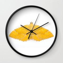 Yellow Shell Moth Wall Clock
