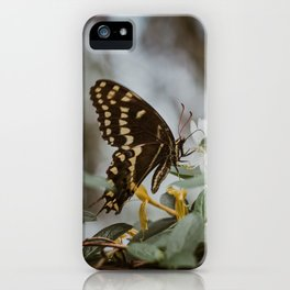 in the quiet moments iPhone Case
