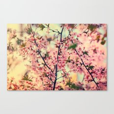 Smell of spring Canvas Print