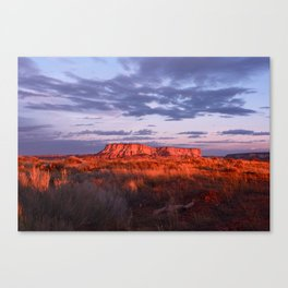 nm Canvas Print