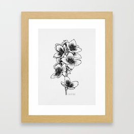 Jasmine Framed Art Print