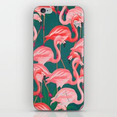 flamingo tropical iPhone & iPod Skin