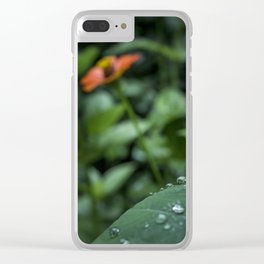 After the rain - Plants Photography Clear iPhone Case