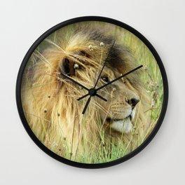 Leo Panthera African lion Wall Clock