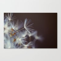 Wake Me A Song Canvas Print