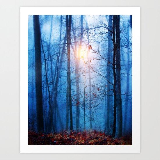 Color & Nature II Art Print